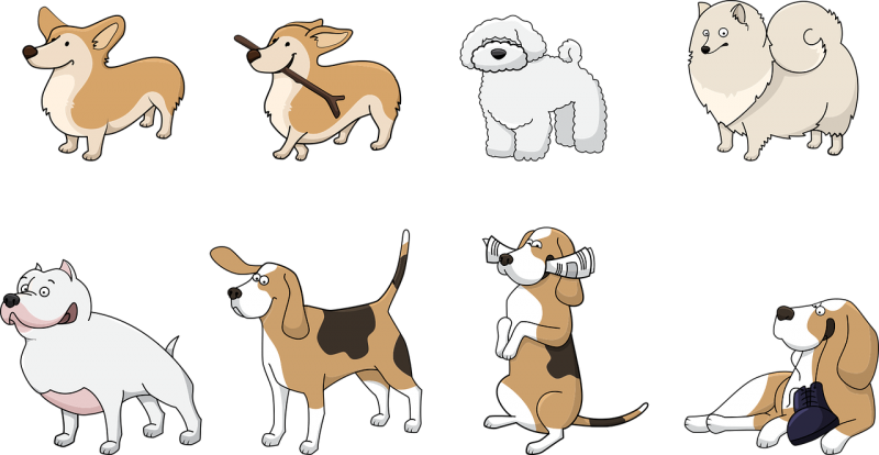 סוגים של כלבים